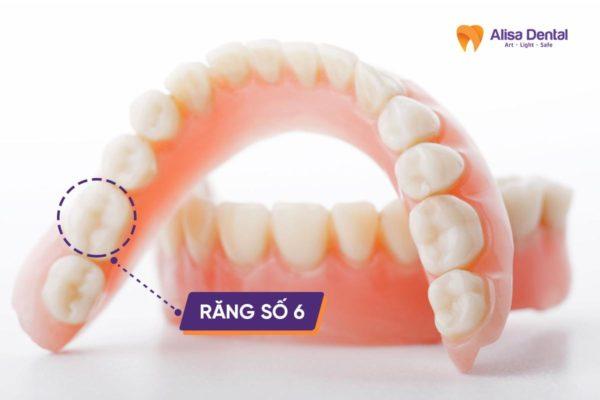 Mất răng cấm 1